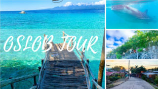 オスロブ観光ツアーまとめ|ジンベエザメ、ツマログの滝、スミロン島