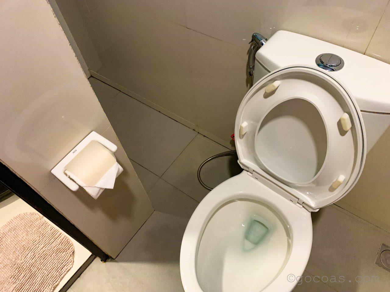 Swiftlets Innトイレ