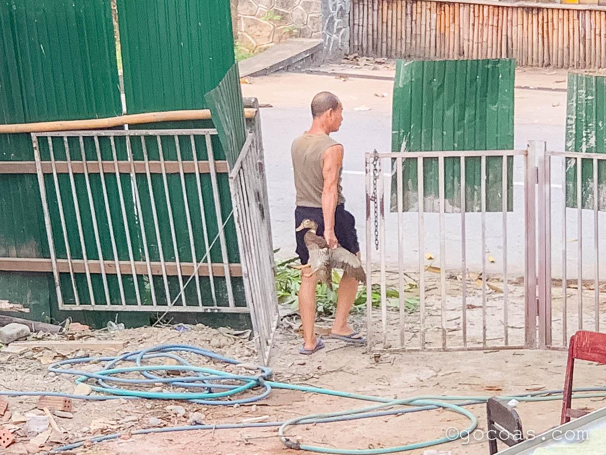 ルアンパバーンで鴨を持つ男性