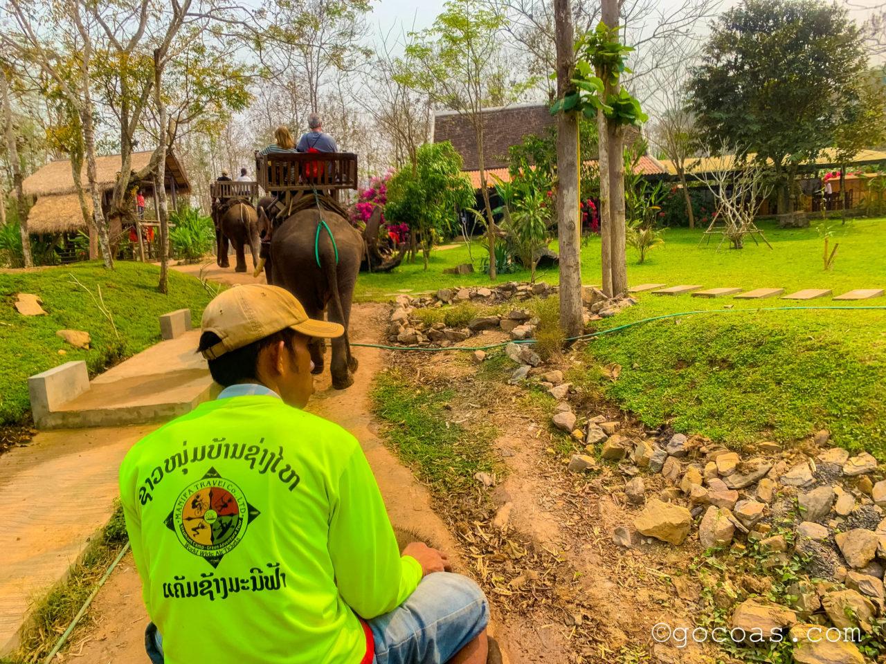 象使い体験で象に乗った景色