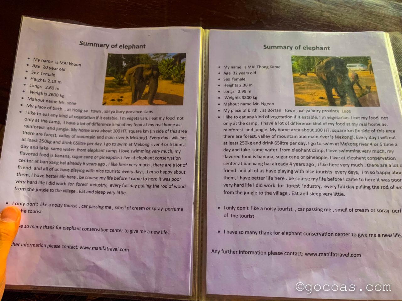 象使い体験の象の紹介パンフレット