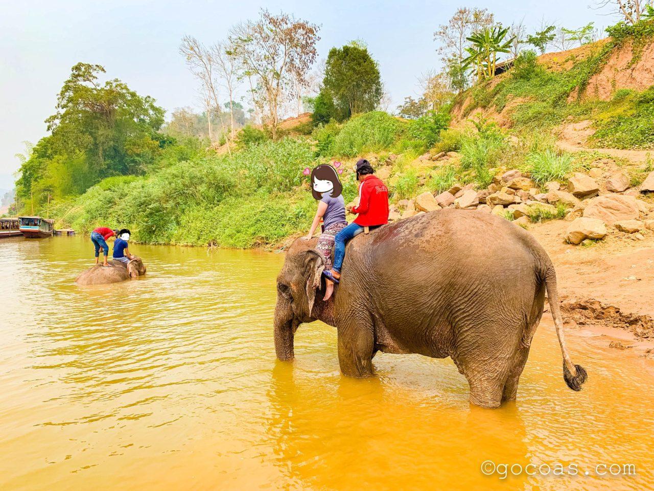 象使い体験で象とのお散歩2回目の川
