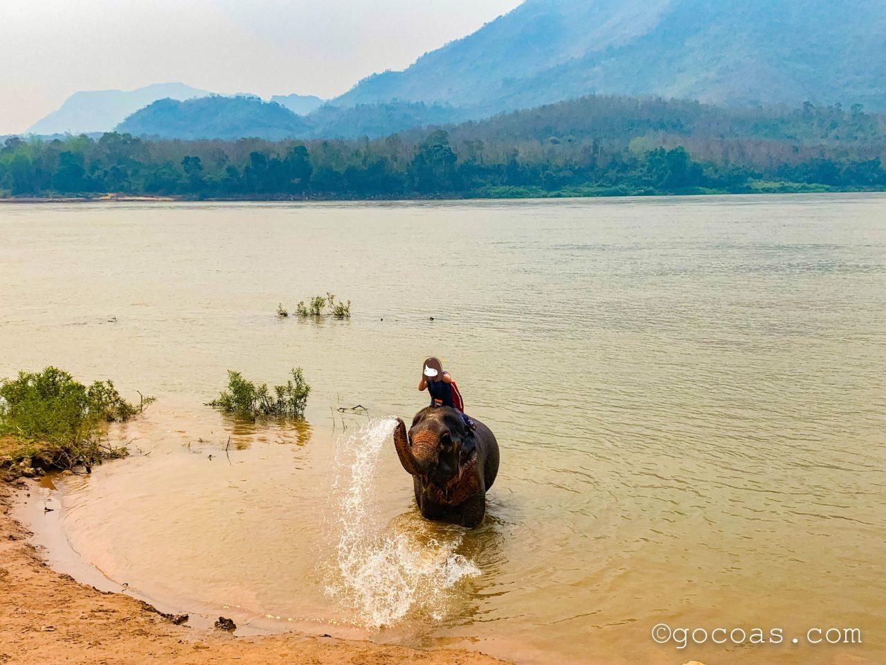 象使い体験で象が鼻から川の水を出すところ