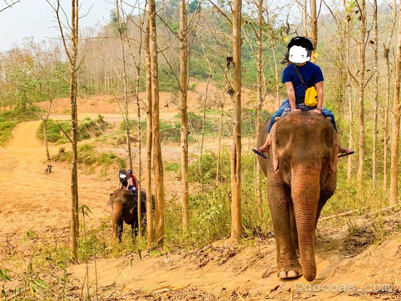 象使い体験で象とのお散歩2回目で山に行く