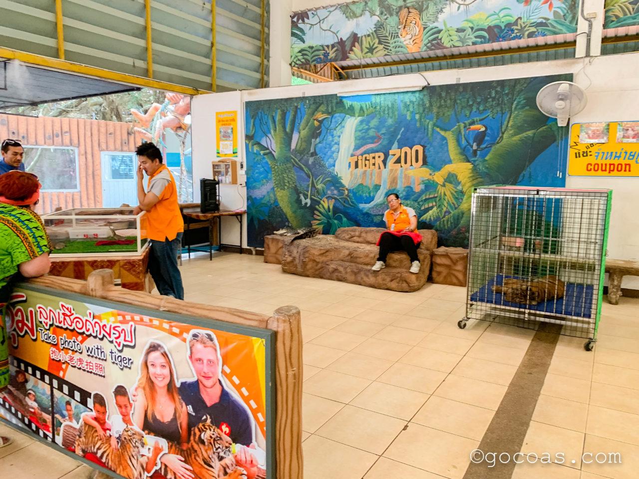 シラチャタイガーズーのトラとミルクをあげる写真撮影体験の受付