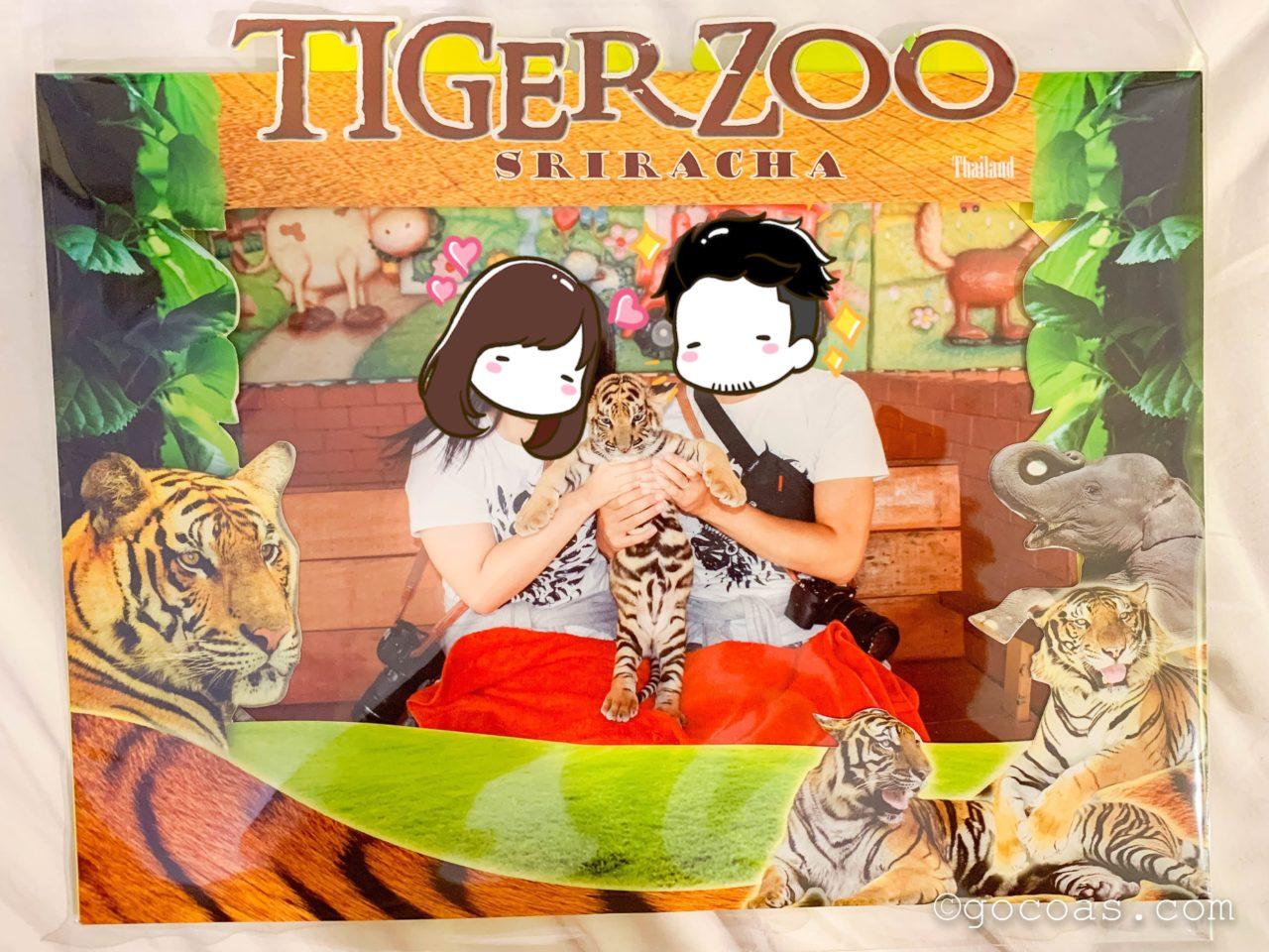 シラチャタイガーズーでトラの赤ちゃんを抱っこするこーしとあいりの写真